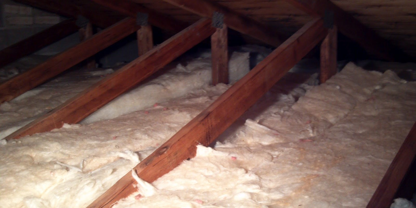 4 Things You Should Know When Checking Your Attic